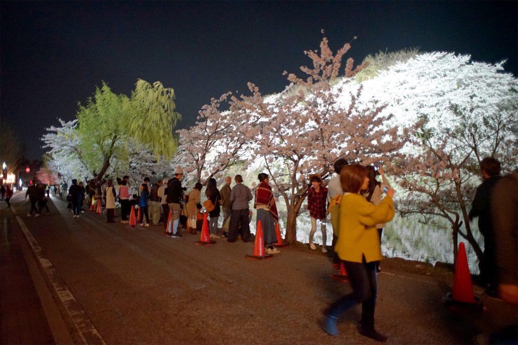 桜を見る人々