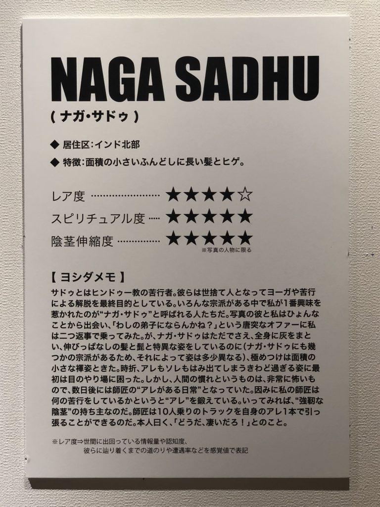 ナガ・サドゥ