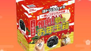 ヨドバシカメラ福袋2019