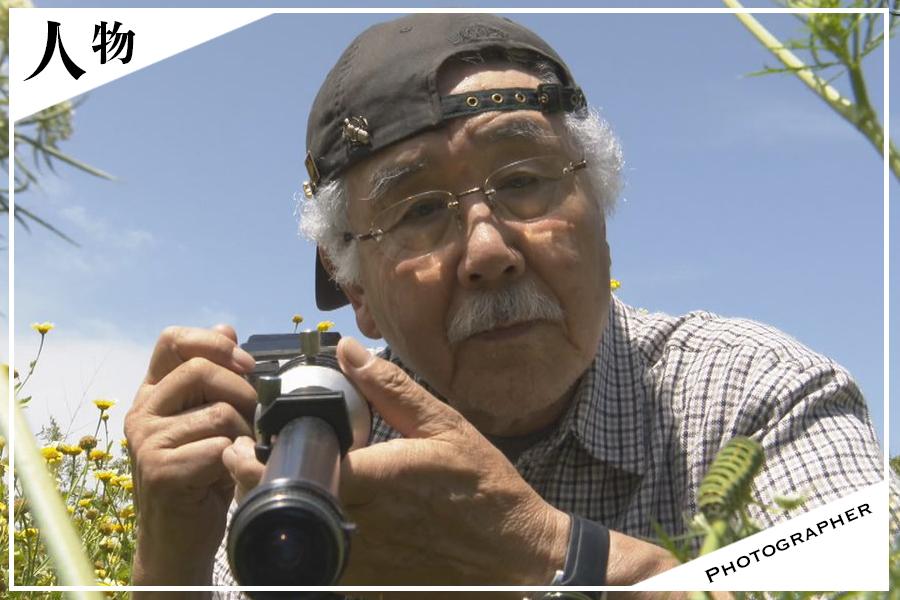 【昆虫写真家】栗林慧が使うカメラ・レンズに写真集から経歴・プロフィールまで知り尽くす