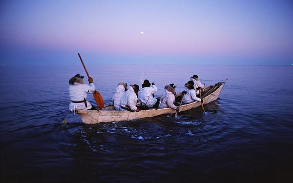 没後20年-特別展-星野道夫の旅