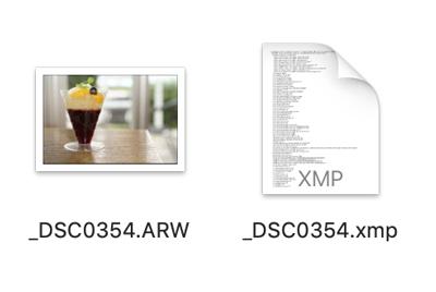 ファイルデータ