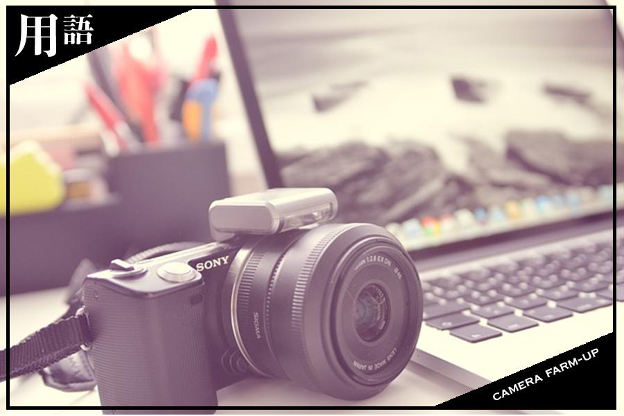 ミラーレスでファームアップの頻度がアップ!?一眼カメラファームアップの重要性や効果とは?