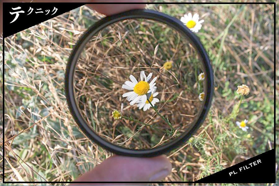 PLフィルターとは?使い方やおすすめの撮影シーン・スポットをチェックして色鮮やかな写真を撮ろう!