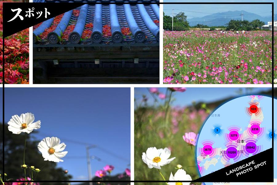Landscape-photo-spot