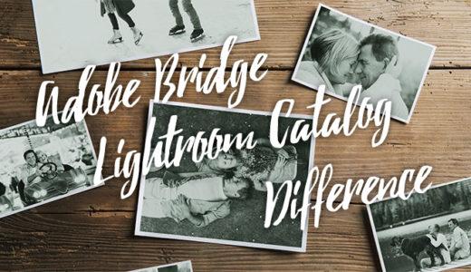 Adobe BridgeとLightroomカタログの違い!上手な使い分け方とは?