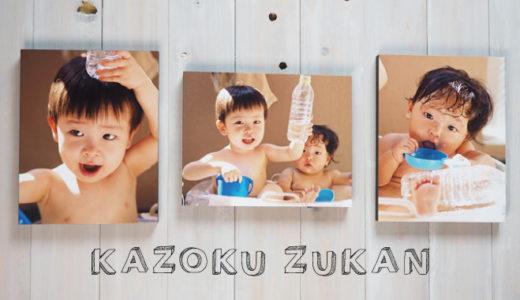 【家族図鑑】銀塩プリントに額縁パネルがネットで簡単注文!写真のプロが仕上げる額装専門店がすごい!