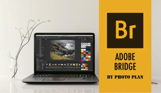 AdobeフォトプランにはBridgeもついてる!知らなきゃ損な画像管理ソフト
