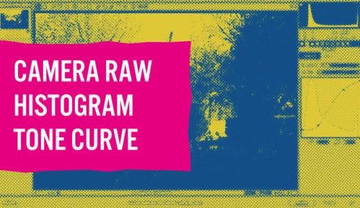 Camera Rawのヒストグラムとトーンカーブの見方・使い方を初心者向けに解説